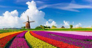 2018 Netherlands BIT